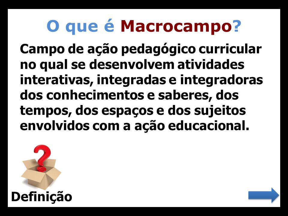 O que é Macrocampo? 22 Campo de ação pedagógico curricular no qual se desenvolvem atividades interativas, integradas e integradoras dos conhecimentos