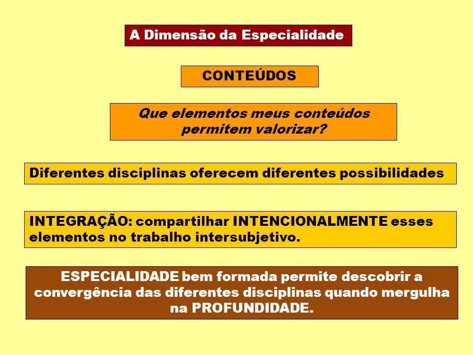 A Dimensão da Especialidade CONTEÚDOS Que elementos meus conteúdos permitem valorizar? Diferentes disciplinas oferecem diferentes possibilidades INTEG