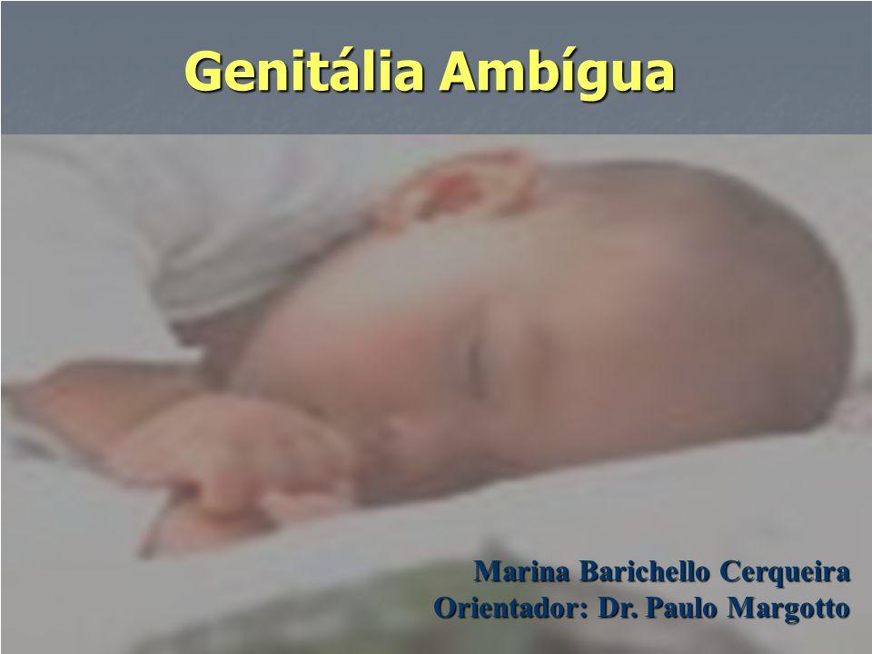 Genitália Ambígua Marina Barichello Cerqueira Orientador: Dr. Paulo Margotto