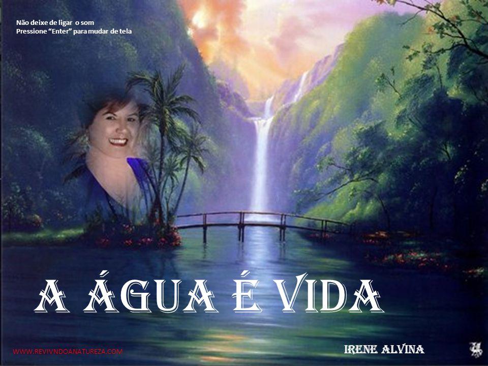A água é vida WWW.REVIVNDOANATUREZA.COM IRENE ALVINA Não deixe de ligar o som Pressione Enter para mudar de tela