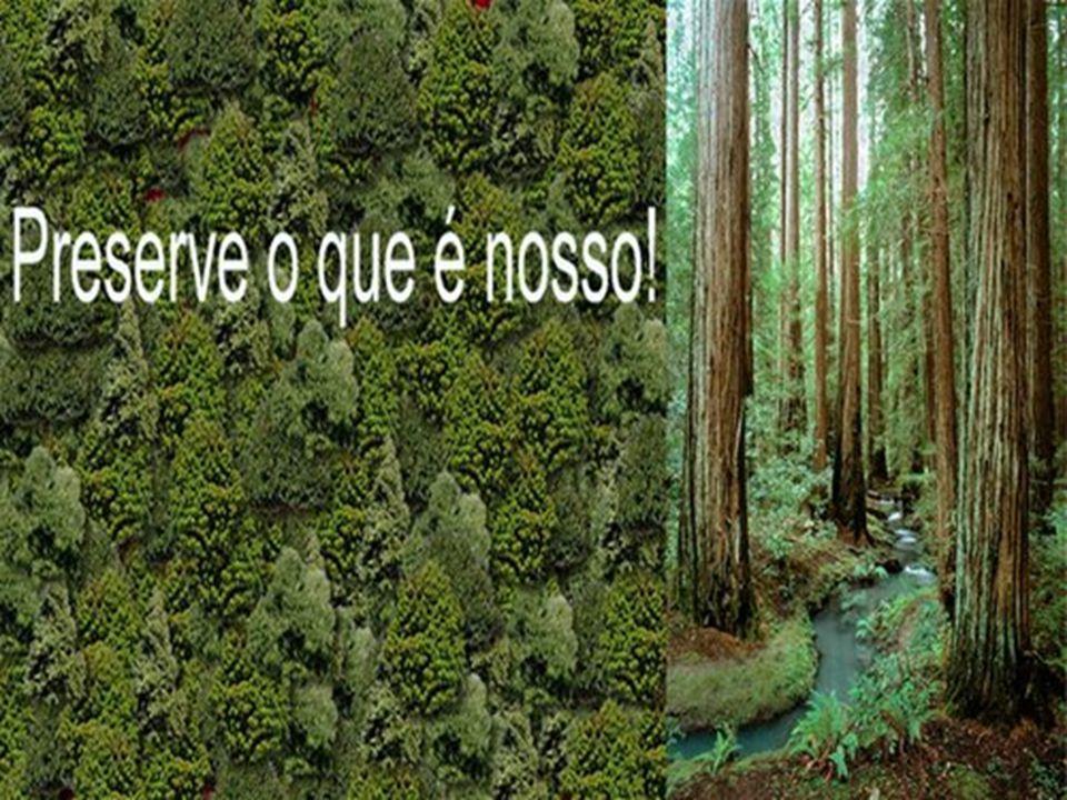"""22 de março """"DIA INTERNACIONAL DA ÁGUA"""", essencial para a vida na terra. Desfrute-a! 22 de março """"DIA INTERNACIONAL DA ÁGUA"""", essencial para a vida na"""