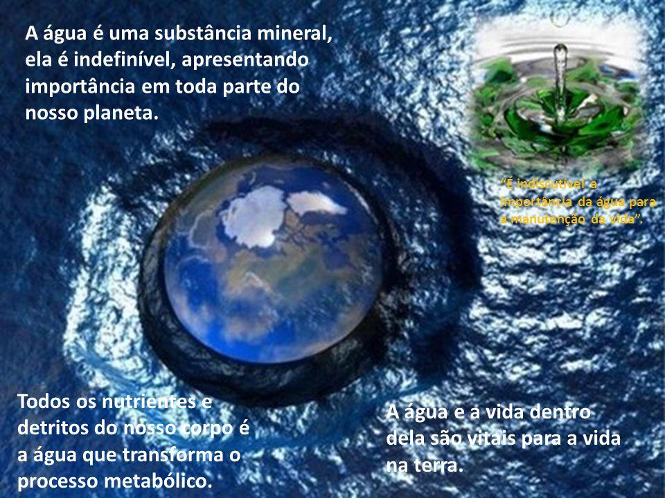 Sabemos que o Brasil é o país mais rico do mundo em termos de água doce, portanto é o alimento mais precioso desse Planeta. Embora haja muita poluição