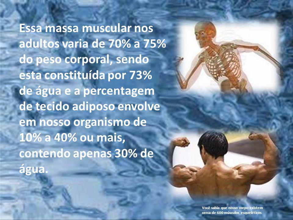 A água é fundamental para regularizar a temperatura do nosso corpo e também essencial para todos os processos fisiológicos de digestão, assim como a a