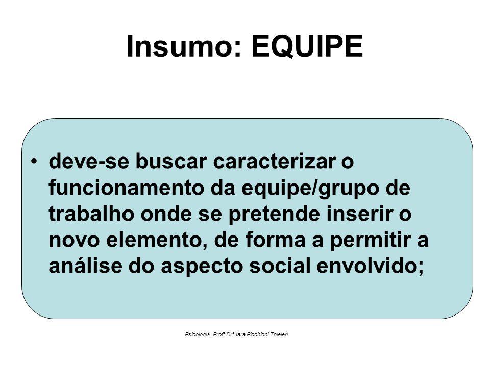 Insumo: EQUIPE •deve-se buscar caracterizar o funcionamento da equipe/grupo de trabalho onde se pretende inserir o novo elemento, de forma a permitir
