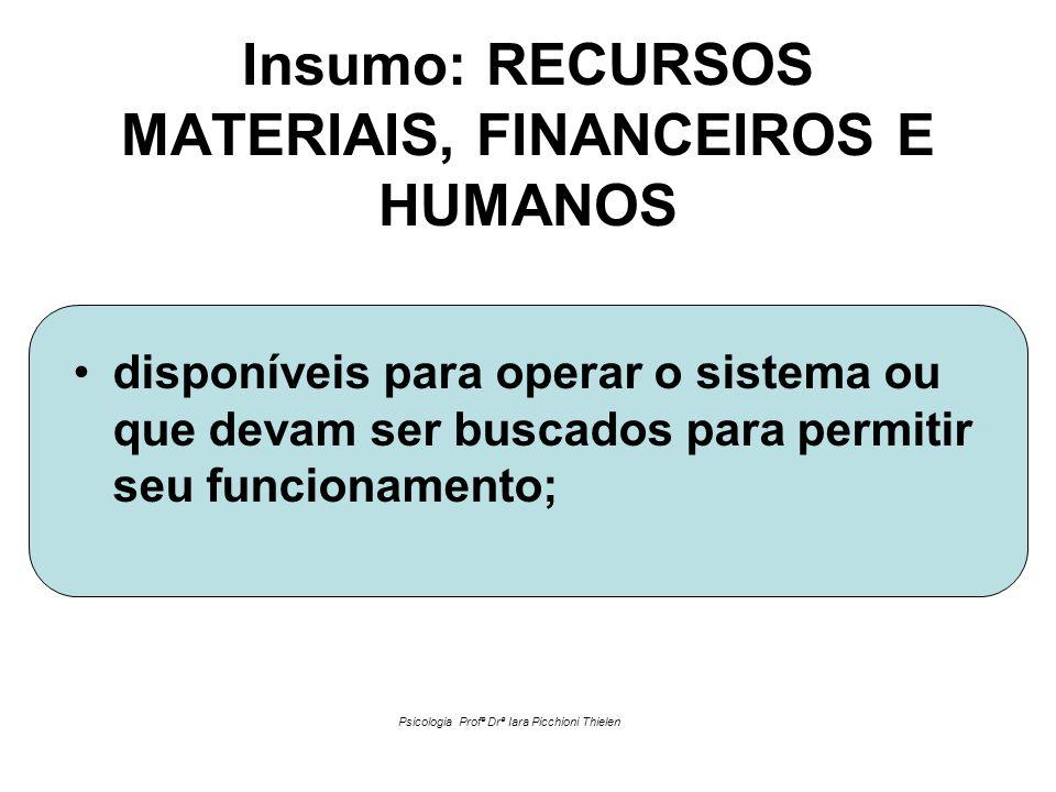 Insumo: RECURSOS MATERIAIS, FINANCEIROS E HUMANOS •disponíveis para operar o sistema ou que devam ser buscados para permitir seu funcionamento; Psicol