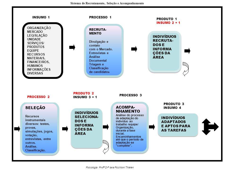 ORGANIZAÇÃO MERCADO LEGISLAÇÃO UNIDADE SERVIÇOS/ PRODUTOS EQUIPE RECURSOS MATERIAIS, FINANCEIROS, HUMANOS INFORMAÇÕES DIVERSAS INSUMO 1PROCESSO 1 RECRUTA- MENTO Divulgação e contato com o Mercado.