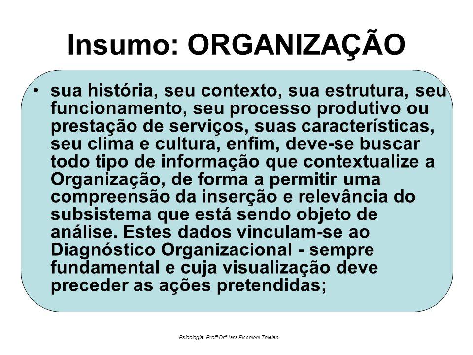 Insumo: ORGANIZAÇÃO •sua história, seu contexto, sua estrutura, seu funcionamento, seu processo produtivo ou prestação de serviços, suas característic