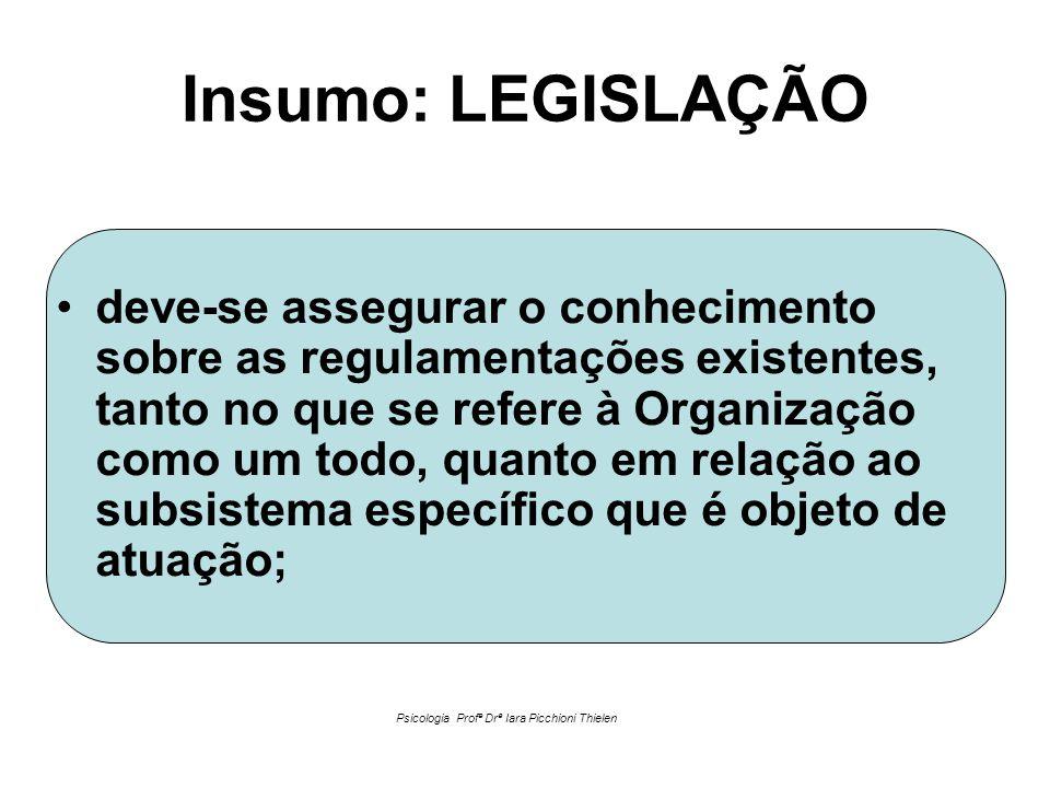 Insumo: LEGISLAÇÃO •deve-se assegurar o conhecimento sobre as regulamentações existentes, tanto no que se refere à Organização como um todo, quanto em relação ao subsistema específico que é objeto de atuação; Psicologia Profª Drª Iara Picchioni Thielen