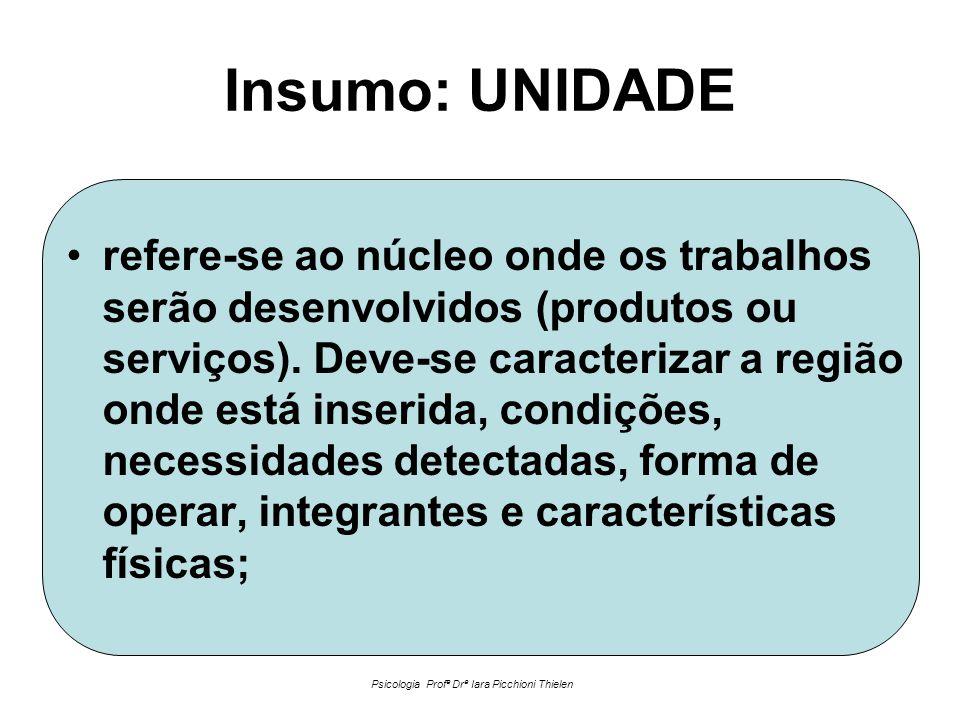 Insumo: UNIDADE •refere-se ao núcleo onde os trabalhos serão desenvolvidos (produtos ou serviços).