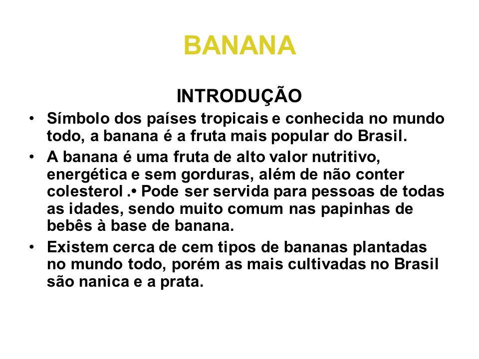 BANANA INTRODUÇÃO •Símbolo dos países tropicais e conhecida no mundo todo, a banana é a fruta mais popular do Brasil. •A banana é uma fruta de alto va