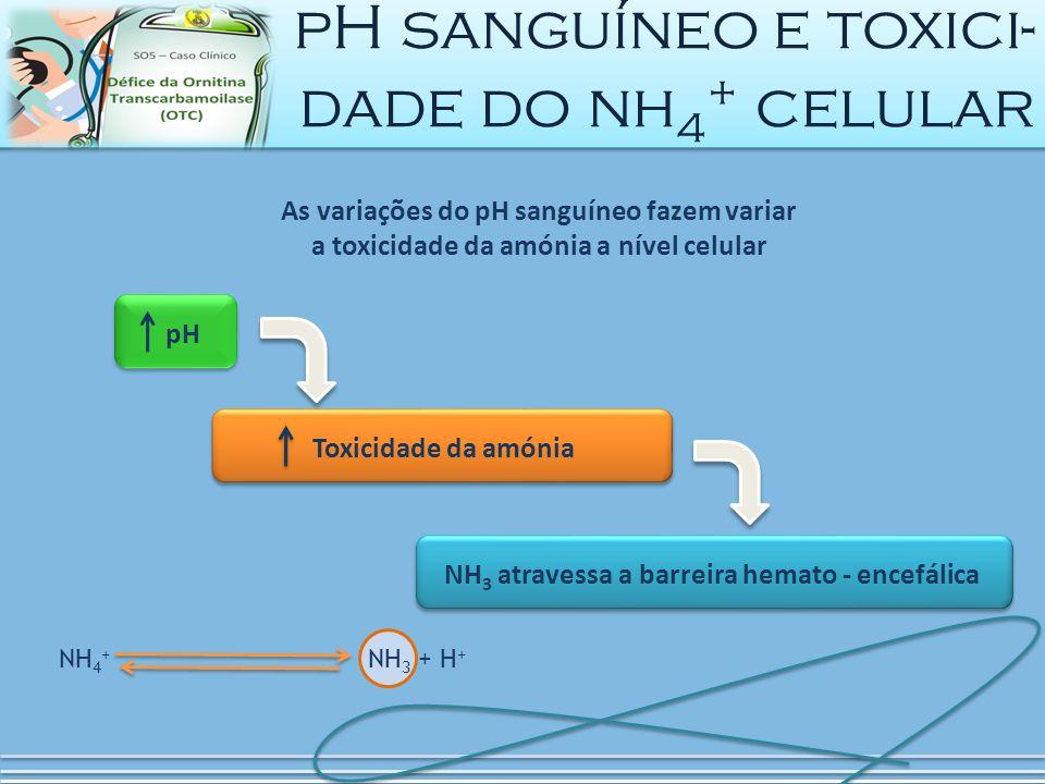 NH 4 + NH 3 + H + pH sanguíneo e toxici- dade do nh 4 + celular As variações do pH sanguíneo fazem variar a toxicidade da amónia a nível celular pHNH 3 atravessa a barreira hemato - encefálica Toxicidade da amónia