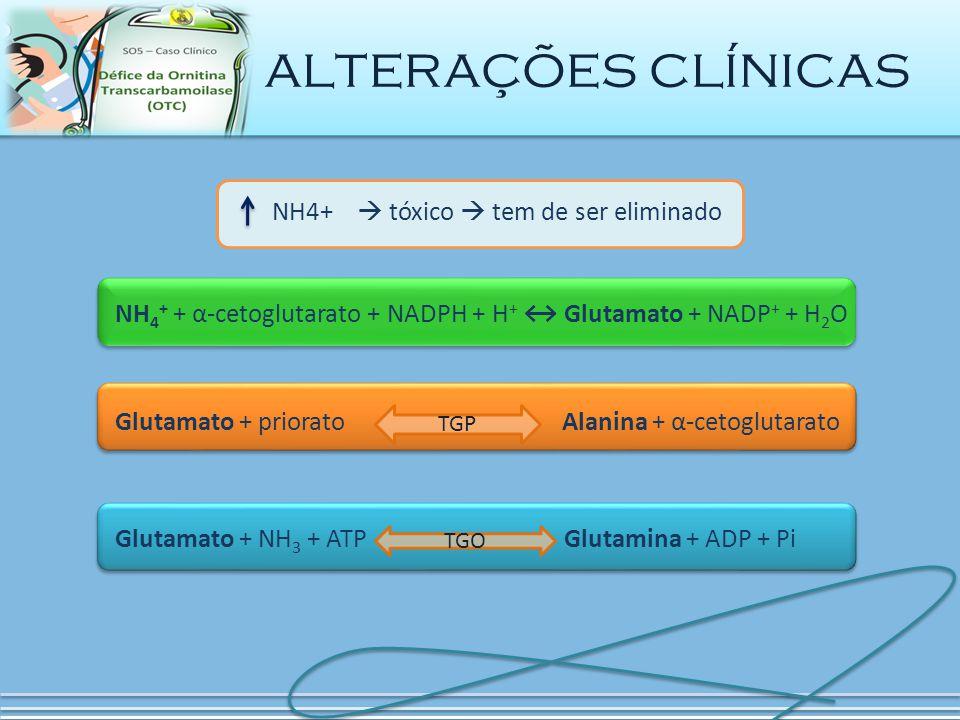 NH4+  tóxico  tem de ser eliminado TGP Glutamato + priorato Alanina + α-cetoglutarato alterações clínicas TGO Glutamato + NH 3 + ATP Glutamina + ADP