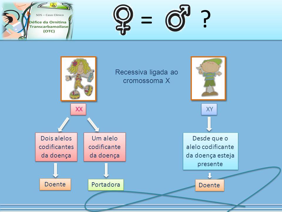= ? XX XY Recessiva ligada ao cromossoma X Dois alelos codificantes da doença Um alelo codificante da doença Doente Portadora Desde que o alelo codifi