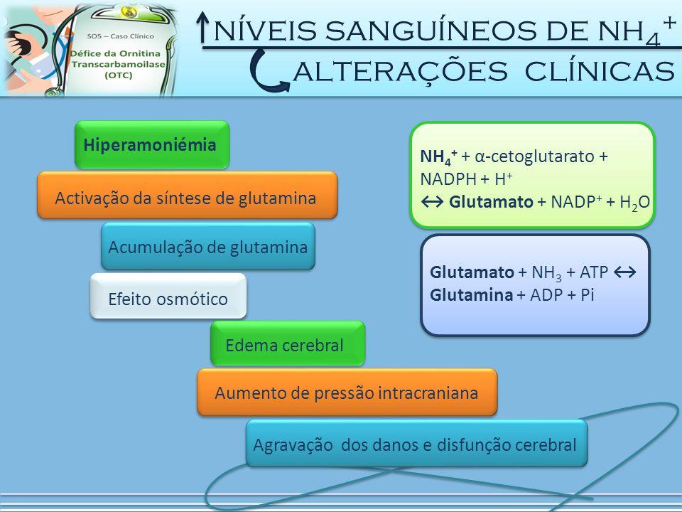 níveis sanguíneos de nh 4 + alterações clínicas Hiperamoniémia Activação da síntese de glutamina Acumulação de glutamina Efeito osmótico Edema cerebral Aumento de pressão intracraniana Agravação dos danos e disfunção cerebral NH 4 + + α-cetoglutarato + NADPH + H + ↔ Glutamato + NADP + + H 2 O Glutamato + NH 3 + ATP ↔ Glutamina + ADP + Pi