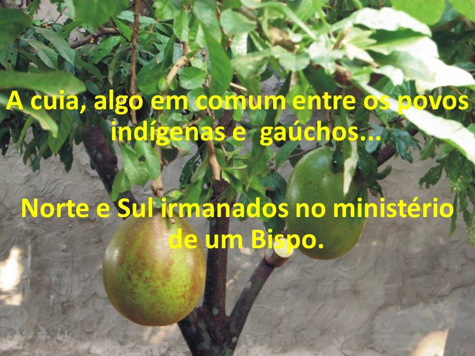 """Terra banhada por dois Rios... Do Coração aberto de Jesus """"saiu sangue e água"""""""