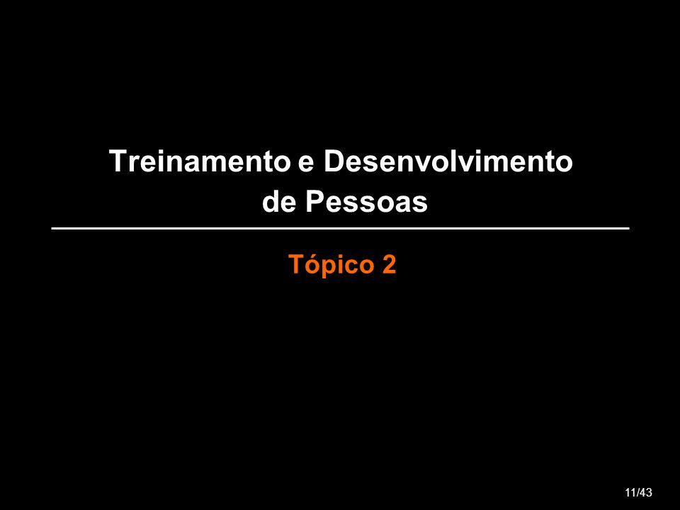 Treinamento e Desenvolvimento de Pessoas Tópico 2 11/43