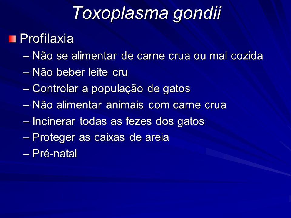 Toxoplasma gondii Profilaxia –Não se alimentar de carne crua ou mal cozida –Não beber leite cru –Controlar a população de gatos –Não alimentar animais