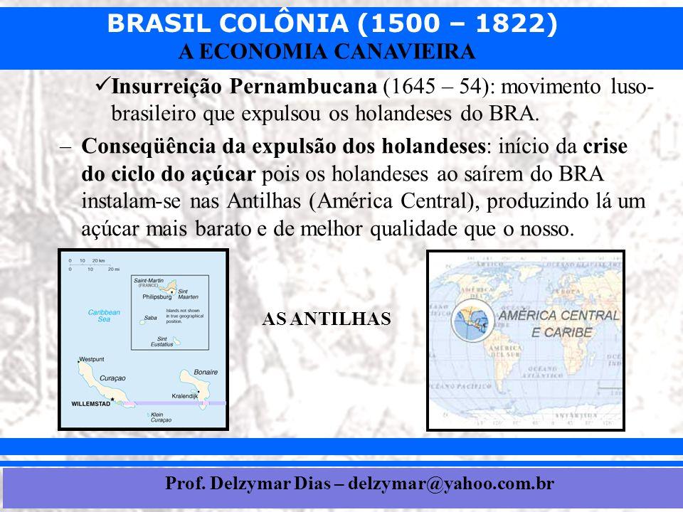 BRASIL COLÔNIA (1500 – 1822) Prof. Iair iair@pop.com.br A ECONOMIA CANAVIEIRA  Insurreição Pernambucana (1645 – 54): movimento luso- brasileiro que e
