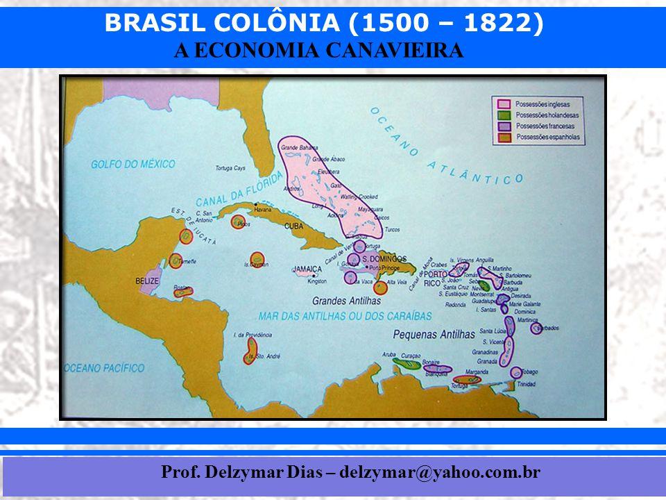 BRASIL COLÔNIA (1500 – 1822) Prof. Iair iair@pop.com.br A ECONOMIA CANAVIEIRA Prof. Delzymar Dias – delzymar@yahoo.com.br