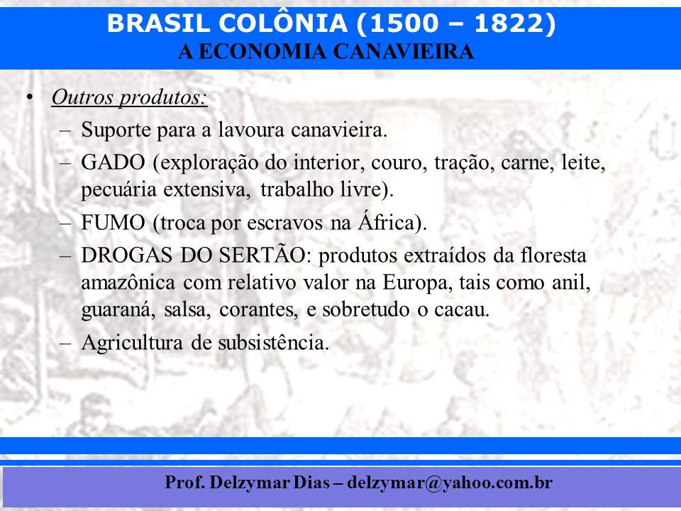 BRASIL COLÔNIA (1500 – 1822) Prof. Iair iair@pop.com.br A ECONOMIA CANAVIEIRA •Outros produtos: –Suporte para a lavoura canavieira. –GADO (exploração