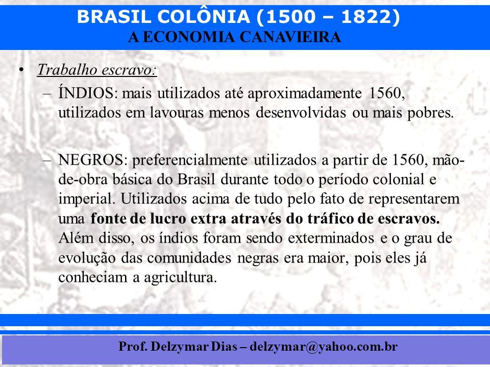 BRASIL COLÔNIA (1500 – 1822) Prof. Iair iair@pop.com.br A ECONOMIA CANAVIEIRA •Trabalho escravo: –ÍNDIOS: mais utilizados até aproximadamente 1560, ut