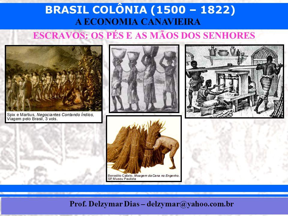 BRASIL COLÔNIA (1500 – 1822) Prof. Iair iair@pop.com.br A ECONOMIA CANAVIEIRA ESCRAVOS: OS PÉS E AS MÃOS DOS SENHORES Prof. Delzymar Dias – delzymar@y