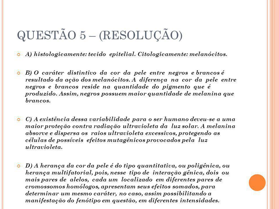 QUESTÃO 6 – (RESOLUÇÃO)