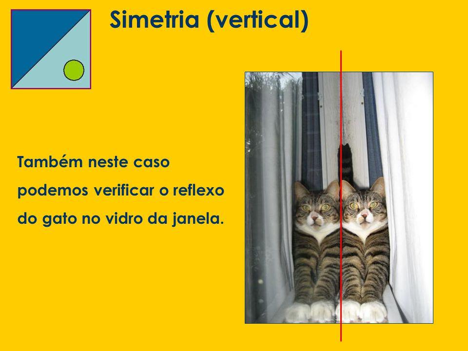 Simetria (vertical) Também neste caso podemos verificar o reflexo do gato no vidro da janela.