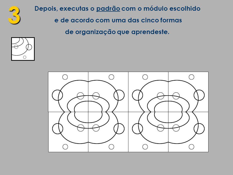 3 Depois, executas o padrão com o módulo escolhido e de acordo com uma das cinco formas de organização que aprendeste.