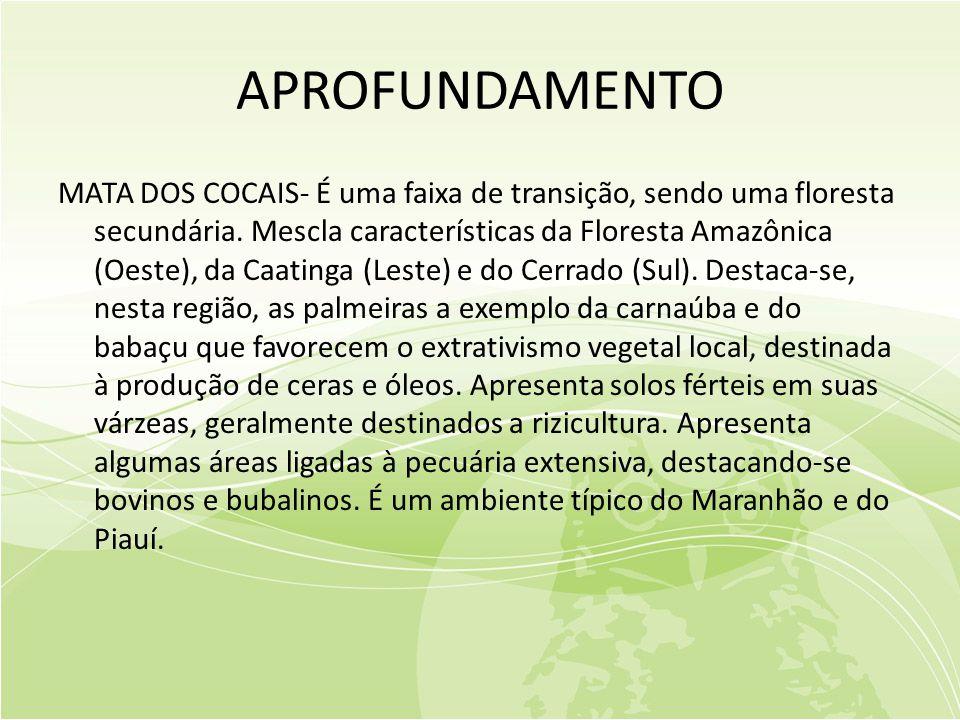 APROFUNDAMENTO MATA DOS COCAIS- É uma faixa de transição, sendo uma floresta secundária.