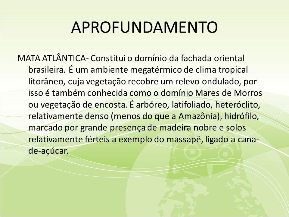 APROFUNDAMENTO MATA ATLÂNTICA- Constitui o domínio da fachada oriental brasileira.