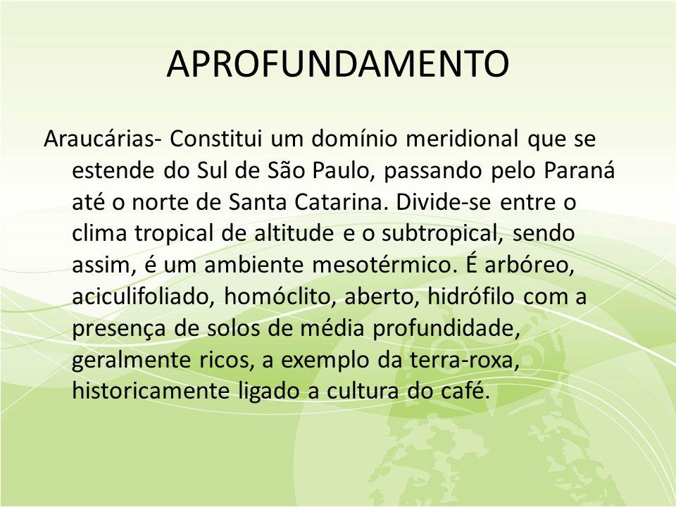 APROFUNDAMENTO Araucárias- Constitui um domínio meridional que se estende do Sul de São Paulo, passando pelo Paraná até o norte de Santa Catarina.