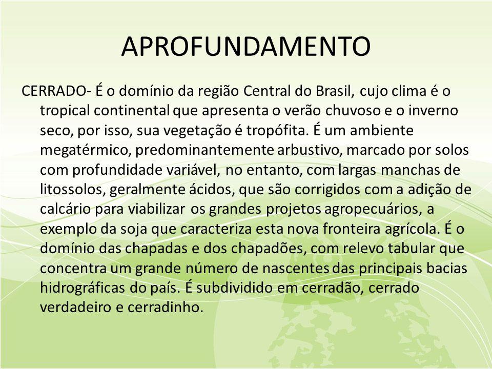 APROFUNDAMENTO CERRADO- É o domínio da região Central do Brasil, cujo clima é o tropical continental que apresenta o verão chuvoso e o inverno seco, por isso, sua vegetação é tropófita.