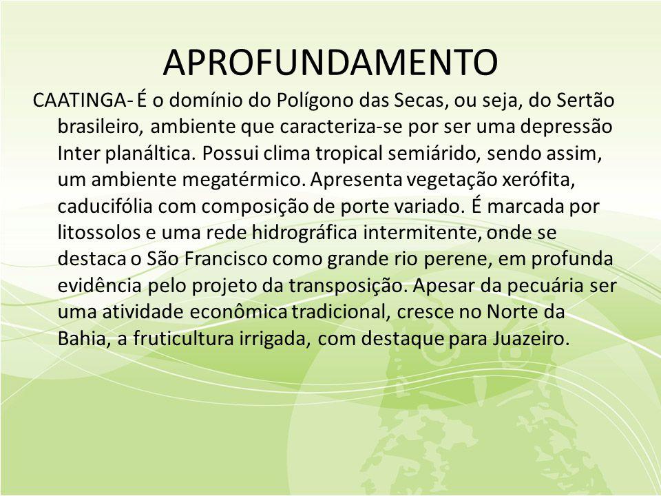APROFUNDAMENTO CAATINGA- É o domínio do Polígono das Secas, ou seja, do Sertão brasileiro, ambiente que caracteriza-se por ser uma depressão Inter planáltica.