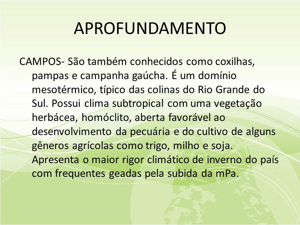APROFUNDAMENTO CAMPOS- São também conhecidos como coxilhas, pampas e campanha gaúcha.