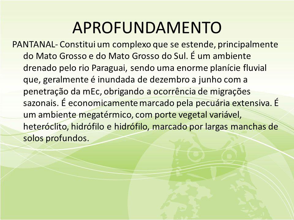 APROFUNDAMENTO PANTANAL- Constitui um complexo que se estende, principalmente do Mato Grosso e do Mato Grosso do Sul.
