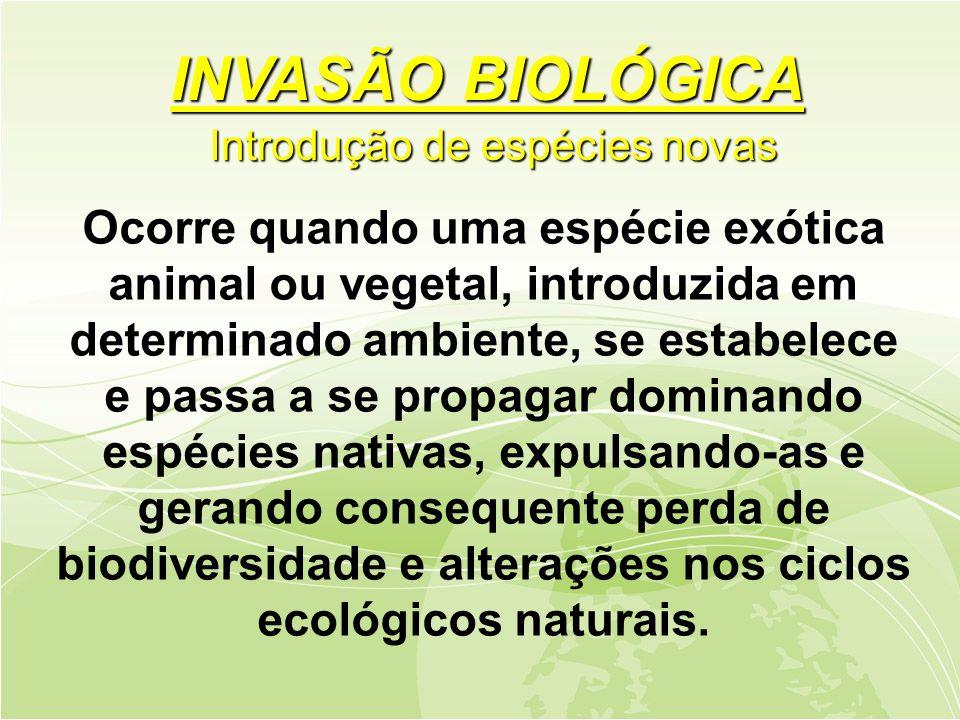 Ocorre quando uma espécie exótica animal ou vegetal, introduzida em determinado ambiente, se estabelece e passa a se propagar dominando espécies nativas, expulsando-as e gerando consequente perda de biodiversidade e alterações nos ciclos ecológicos naturais.