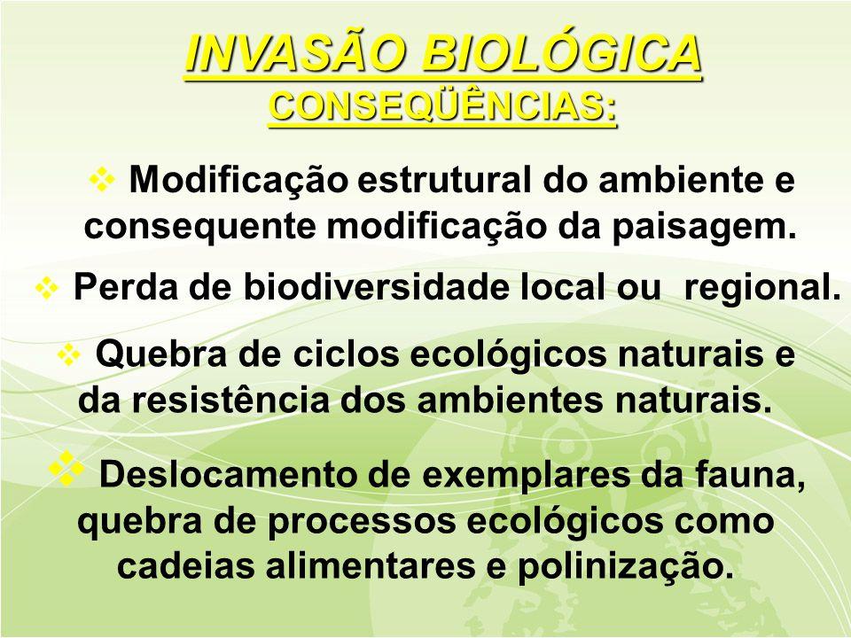  Deslocamento de exemplares da fauna, quebra de processos ecológicos como cadeias alimentares e polinização.