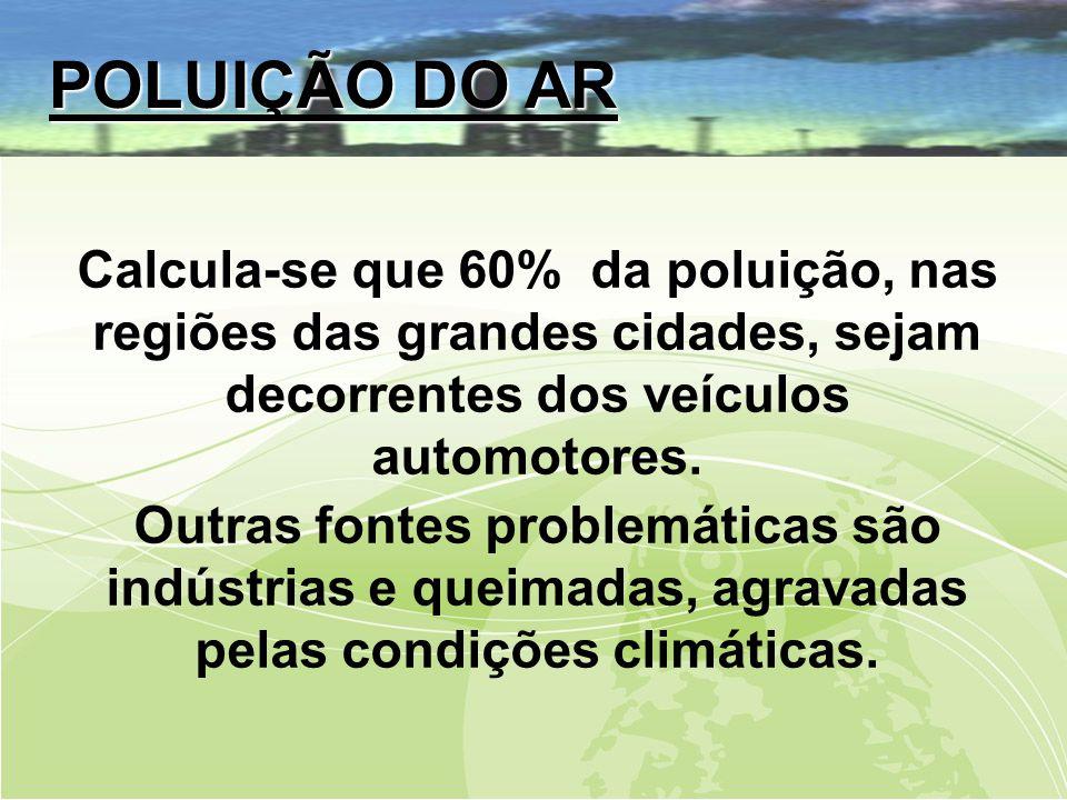 POLUIÇÃO DO AR Calcula-se que 60% da poluição, nas regiões das grandes cidades, sejam decorrentes dos veículos automotores.