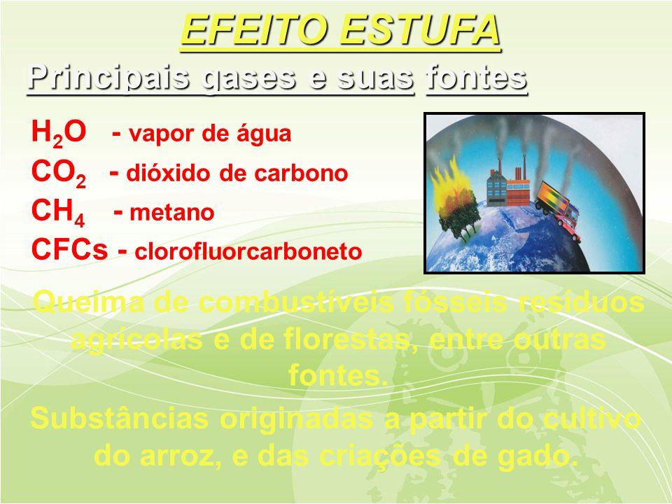 H 2 O - vapor de água CO 2 - dióxido de carbono CH 4 - metano CFCs - clorofluorcarboneto Principais gases e suas fontes Queima de combustíveis fósseis resíduos agrícolas e de florestas, entre outras fontes.