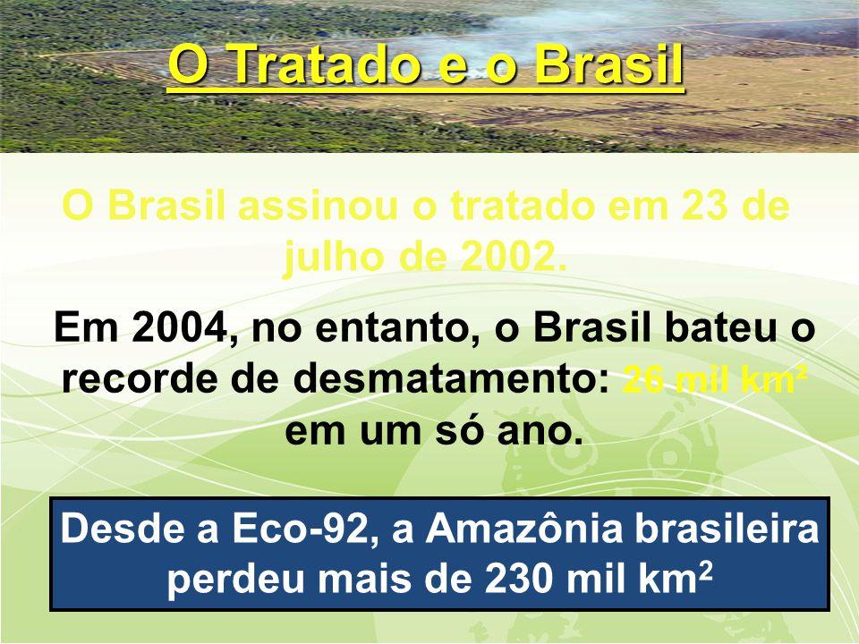 Em 2004, no entanto, o Brasil bateu o recorde de desmatamento: 26 mil km² em um só ano.