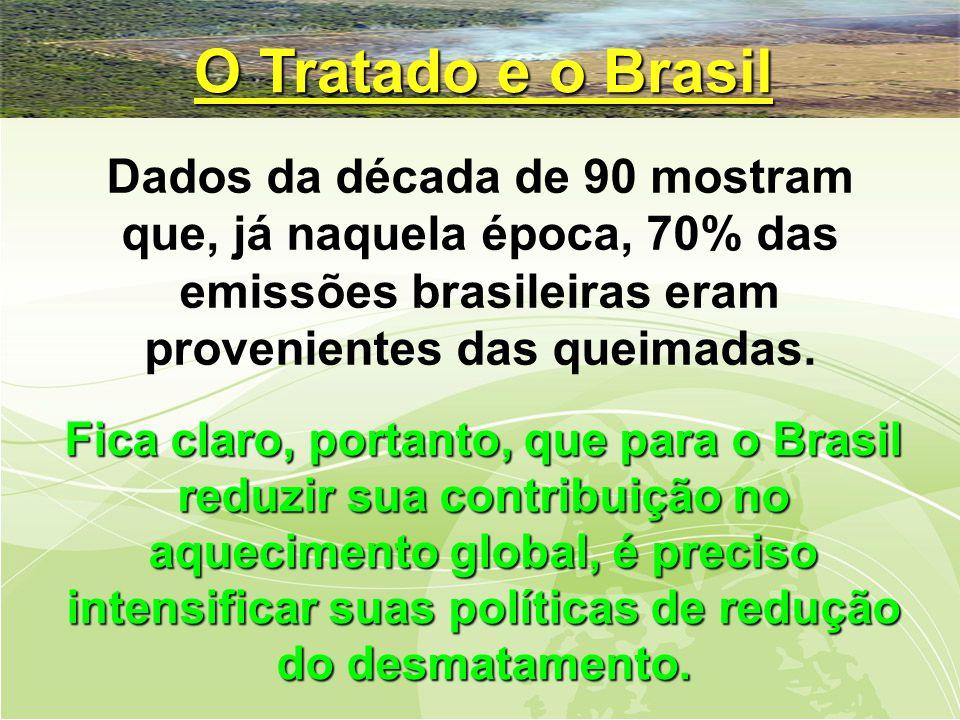 Dados da década de 90 mostram que, já naquela época, 70% das emissões brasileiras eram provenientes das queimadas.