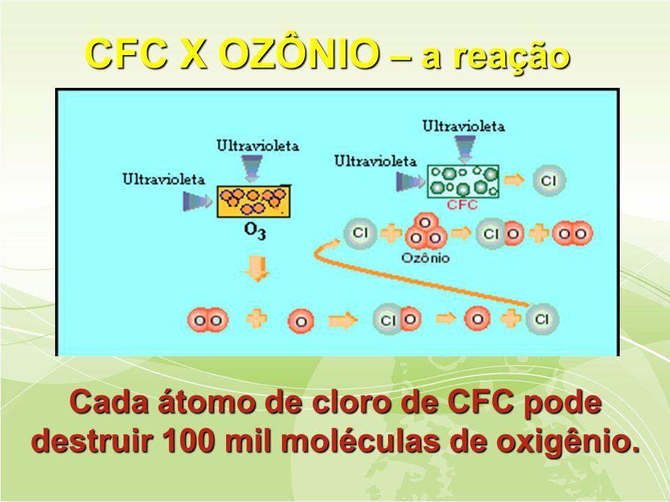 CFC X OZÔNIO – a reação Cada átomo de cloro de CFC pode destruir 100 mil moléculas de oxigênio.
