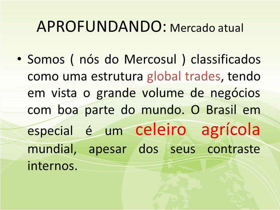 APROFUNDANDO: Mercado atual • Somos ( nós do Mercosul ) classificados como uma estrutura global trades, tendo em vista o grande volume de negócios com boa parte do mundo.