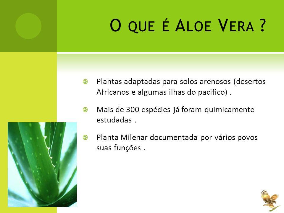 S UA H ISTÓRIA E C OMPROVAÇÕES CIENTIFICAS  Papyrus Ebers - Já é documentado o uso da Aloe vera desde 1500 A.C.