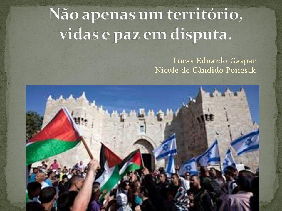 Lucas Eduardo Gaspar Nicole de Cândido Ponestk