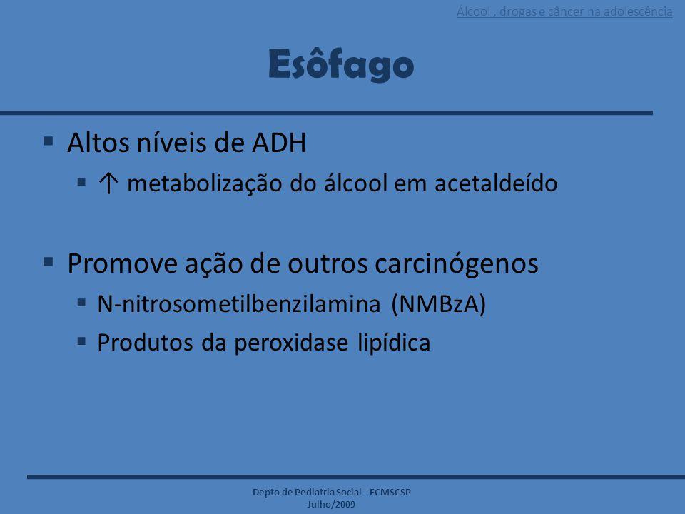 Álcool, drogas e câncer na adolescência Depto de Pediatria Social - FCMSCSP Julho/2009 Esôfago  Altos níveis de ADH  ↑ metabolização do álcool em ac