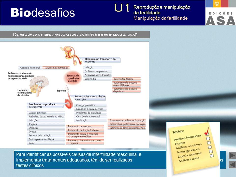 Biodesafios 12 Quais são as principais causas da infertilidade masculina? Para identificar as possíveis causas de infertilidade masculina e implementa