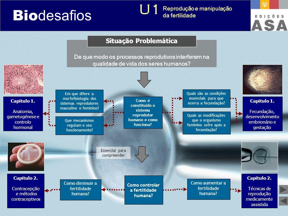 Biodesafios 12 De que modo os processos reprodutivos interferem na qualidade de vida dos seres humanos? Situação Problemática Como é constituído o sis