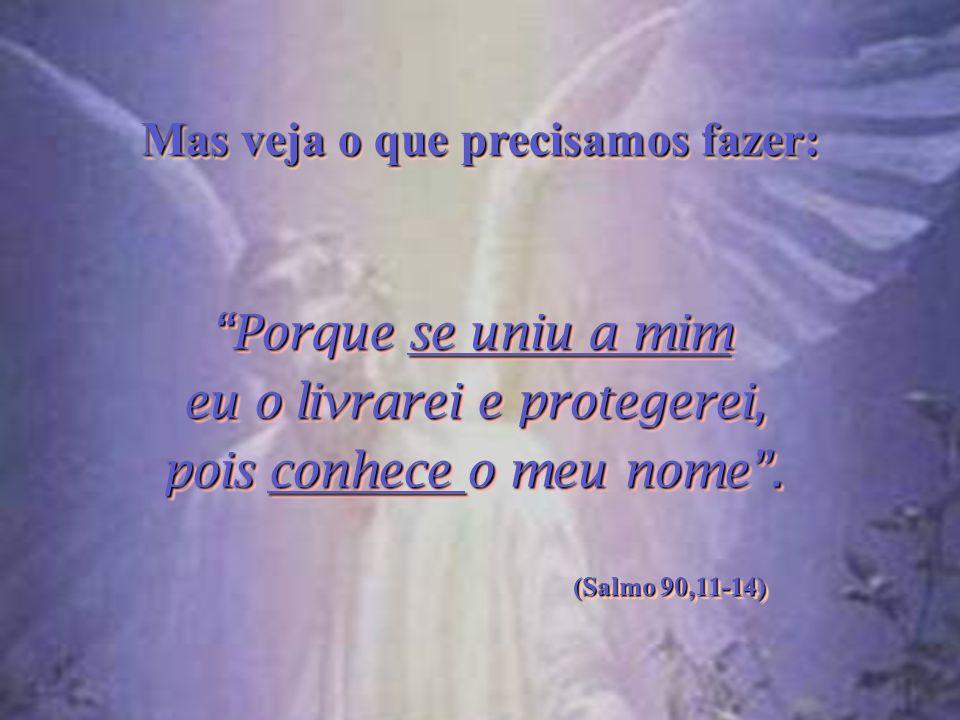 ...Porque aos seus anjos Ele mandou que te guardem em todos os teus caminhos....Porque aos seus anjos Ele mandou que te guardem em todos os teus camin